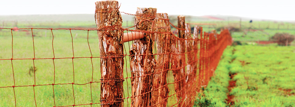 Molokai Ranch Wire Fence